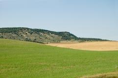Montagne e campo Immagini Stock