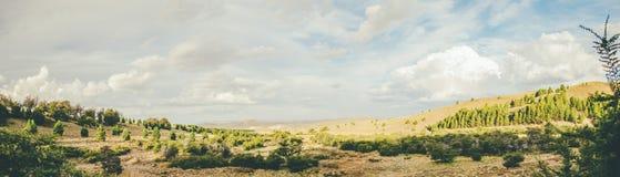 Montagne e campo Fotografie Stock