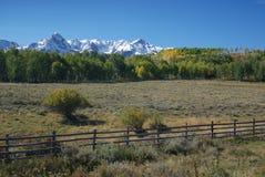 Montagne e campo del Colorado San Juan Immagine Stock