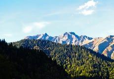 Montagne e colline coperte di foreste Immagine Stock