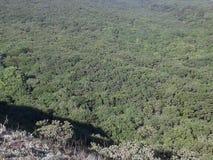 Montagne e colline Foreste miste della quercia e della foresta Bella natura Giovani adulti Cielo blu Immagini Stock Libere da Diritti