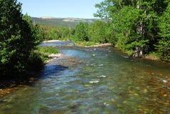 Montagne e fiume di estate Fotografie Stock Libere da Diritti