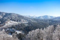 Montagne e foresta in un giorno di inverno fotografia stock
