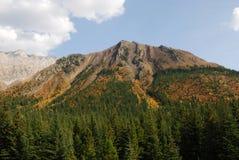 Montagne e foreste di autunno fotografia stock