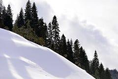 Montagne e foreste nevicate Fotografia Stock Libera da Diritti