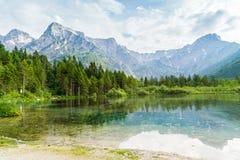Montagne e lago delle alpi in Almsee in Austria Fotografie Stock