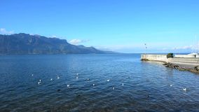 Montagne e lago geneva stock footage