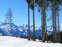 Montagne e neve Immagine Stock