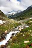 Montagne e pascolo delle alpi Immagini Stock Libere da Diritti