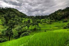 Montagne e piantagioni del riso nel Annapurna Immagini Stock Libere da Diritti