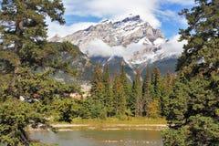 Montagne e pini al fiume Banff della montagna immagini stock