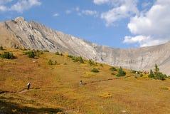 Montagne e prati di autunno fotografie stock libere da diritti
