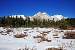 Montagne e prati di inverno Immagini Stock Libere da Diritti