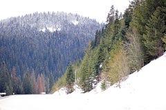 Montagne e strada principale nevicate Immagini Stock Libere da Diritti