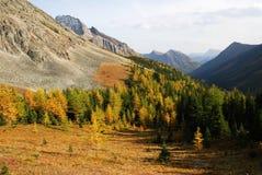 Montagne e valle fotografia stock