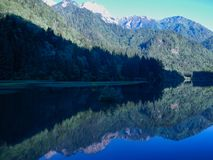 Montagne ed alberi fotografia stock