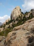 Montagne ed alberi Fotografie Stock