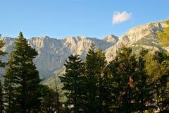 Montagne ed alberi Fotografia Stock Libera da Diritti