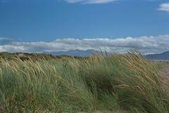 Montagne ed erba del mare dalla spiaggia di pollice immagine stock