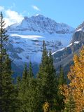 Montagne en automne Photographie stock libre de droits