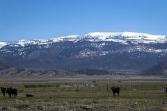 Montagne en fer à cheval en avril Images libres de droits