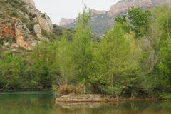 Montagne en sierra del montseny photos libres de droits