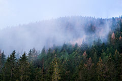 Montagne en Slovaquie, haut Tatras Image stock