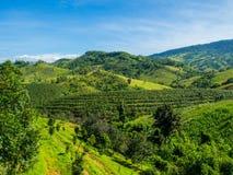 Montagne en Sunny Day en ciel clair Photos libres de droits
