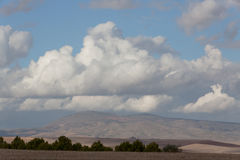 Montagne et arbre dedans, l'Algérie Image libre de droits