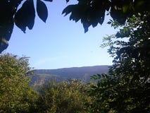 Montagne et arbres Photo stock