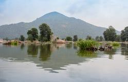 Montagne et buisson Photos stock