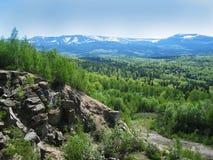 Montagne et forêt Photo libre de droits