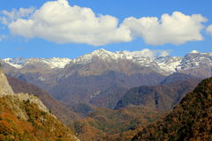 Montagne et forêt d'automne photographie stock