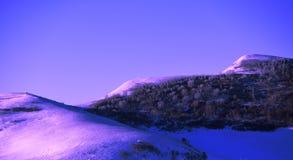 Montagne et forêt de neige Photographie stock