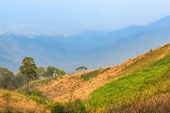 Montagne et montagne photo libre de droits