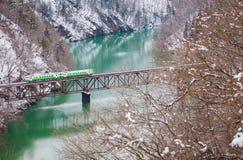 Montagne et neige du Japon avec le train local Photos libres de droits