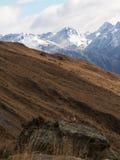 Montagne et oiseau Photographie stock