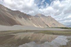 Montagne et paysage naturel, Leh Ladakh Inde en août 2017 Photo stock