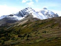 Montagne et pré Image libre de droits