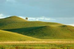 Montagne et prairie image libre de droits