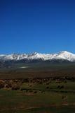 Montagne et prairie de neige Photographie stock libre de droits