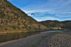 Montagne et rivière Photo libre de droits