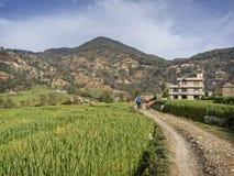 Montagne faisant du vélo au Népal Photographie stock