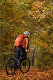 Montagne faisant du vélo en bas du journal Touriste avec le voyage de sac à dos sur le vélo Photographie stock