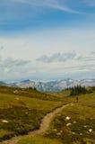 Montagne faisant du vélo sur Frisby Ridge Trail images libres de droits