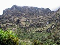 Montagne, fleurs et roches avec des nuages Photographie stock