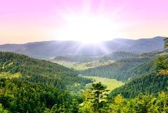 Montagne, forêt Photo libre de droits