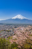 Montagne Fuji au printemps Photo stock