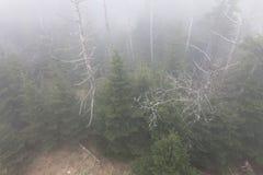Montagne fumose Fotografia Stock Libera da Diritti