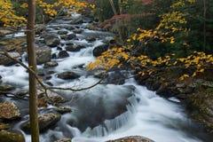 Montagne fumose della cascata di autunno Immagine Stock